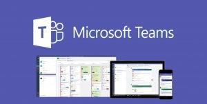 Microsoft Teams platforms